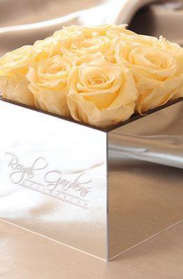 Champagne ruže u lux mirror box-u - 9 cvjetova