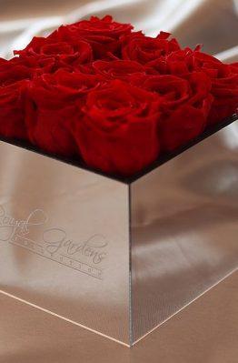 Crvene ruže u lux mirror box-u - 9 cvjetova