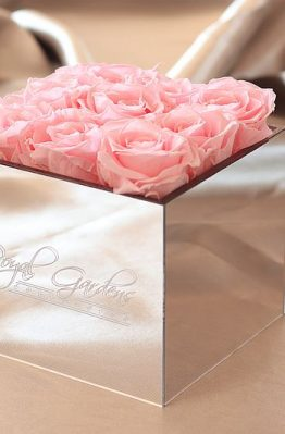 Roza ruže u lux mirror box-u - 9 cvjetova