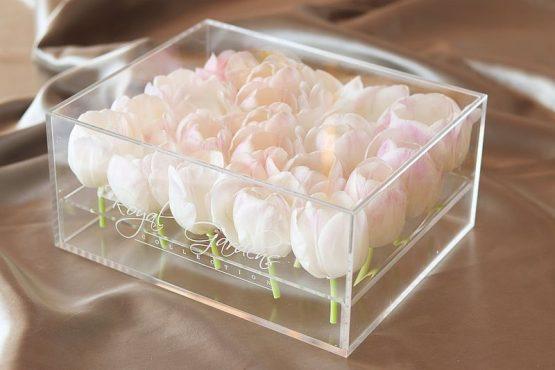 Bijeli tulipani u modernoj prozirnoj kutiji - 20 cvjetova