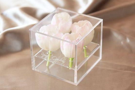 Bijeli tulipani u modernoj prozirnoj kutiji - 4 cvijeta