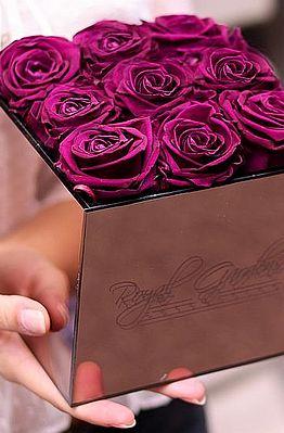 Roza tulipani u modernoj prozirnoj kutiji - 4 cvijeta
